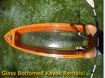 Glass Bottomed Kayak Rentals