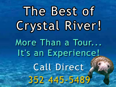 Crystal River Manatee Tours